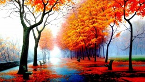 viale autunno