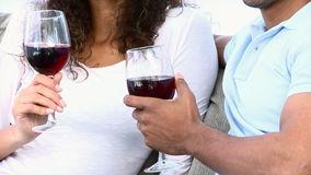 vino veritas 1